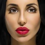 Schönheits-Frauen-Porträt. Berufsmake-up für Brunette Stockbilder