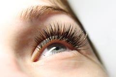 Schönheits-Modell mit den langen Wimpern stockbilder