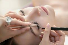Schönheits-Modell mit perfekter frischer Haut und den langen Wimpern Lizenzfreies Stockbild
