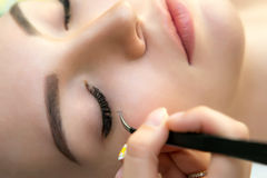 Schönheits-Modell mit perfekter frischer Haut und den langen Wimpern Stockfotografie