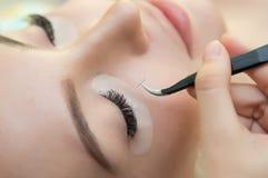Schönheits-Modell mit perfekter frischer Haut und den langen Wimpern Lizenzfreies Stockfoto