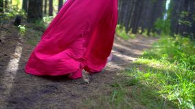 Schönheits-romantisches Mädchen in der Waldnahaufnahme des roten Kleides Glückliche Frau im Herbst in der Zeitlupe, 120 fps Schön stock video footage
