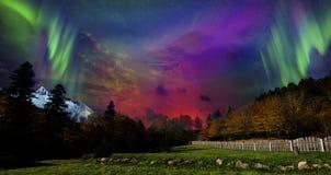 Schönheitsart des Nordens zu Beginn des Herbstes lizenzfreies stockbild