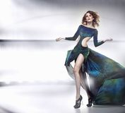 Schönheitsdame im herrlichen Kleid Lizenzfreie Stockbilder