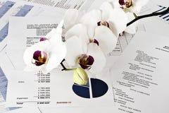 Schönheitsfinanzmarkt Lizenzfreie Stockbilder