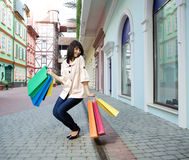 Schönheitsfrau mit Einkaufstasche Stockfotos