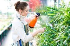 Schönheitsgärtner in Sprühblumen und in den Anlagen des bunten Schutzblechs Stockbild