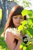 Schönheitsmädchen in der Flieder. stockfoto