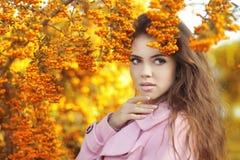 Schönheitsmädchen-Herbstporträt der Mode modisches Brunettefrau vorbei Stockfotografie