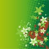 Schönheitssommer-Blumenhintergrund Lizenzfreies Stockfoto