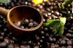 Schöpflöffel der schwarzen Oliven Stockbild