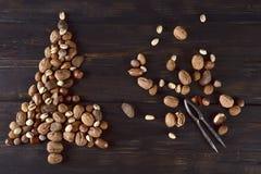 Schössling gemacht mit Trockenfrüchten lizenzfreie stockfotos
