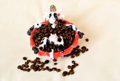 Schüchtern Sie das Sitzen in der roten Kaffeetasse mit Bohnen ein Stockbild