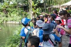 Schüler und Lehrer am Singapur-Zoo Lizenzfreie Stockbilder