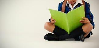 Schülerlesebuch auf weißem Hintergrund Stockfotos