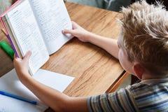 Schülerlesebuch an seinem Schreibtisch Stockbild