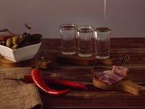 Schüsse des Wodkas Lizenzfreie Stockbilder