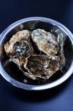 Schüssel Austern Stockfotos