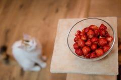 Schüssel frische Erdbeeren Stockfoto