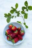 Schüssel frische Erdbeeren auf der weißen Tabelle mit grünen Blättern Lizenzfreies Stockfoto