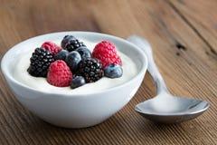 Schüssel frische Mischbeeren und Jogurt Lizenzfreie Stockfotografie