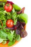 Schüssel frischer grüner Salat mit Tomaten Stockfotografie