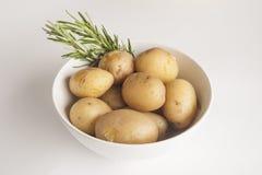 Schüssel gekochte Kartoffeln mit Rosmarin Lizenzfreie Stockbilder