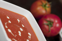 Schüssel Gemüsesuppe Lizenzfreies Stockfoto
