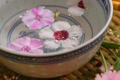Schüssel mit Blumenwasser Lizenzfreies Stockfoto