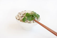 Schüssel mit gekochtem Reis und Ess-Stäbchen Lizenzfreie Stockfotos
