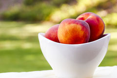Schüssel Pfirsiche Stockbild