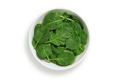 Schüssel Spinat-Blätter Stockfotografie