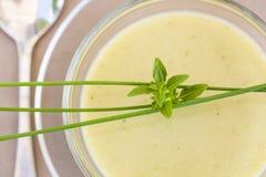 Schüssel von grünem Gaspacho mit Basilikum und Schnittlauchen Lizenzfreie Stockfotos