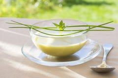 Schüssel von grünem Gaspacho mit Basilikum und Schnittlauchen Stockbild