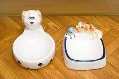 Schüsseln für Hund und Katze Lizenzfreie Stockfotos