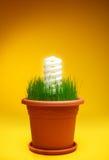 Schützen Sie die Natur und verwenden Sie eco Energie Lizenzfreies Stockbild