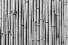 Schützender Zaun von den trockenen Stöcken eines Bambusses der Sepiafarbe für den abstrakten strukturierten Hintergrund Stockbilder
