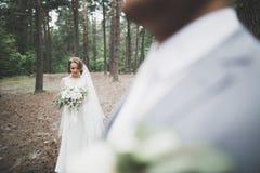 Sch?ne Braut und die Umfassung und das K?ssen an ihrem Hochzeitstag pflegen lizenzfreies stockfoto