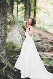 Sch?ne gl?ckliche Braut drau?en in einem Wald mit Felsen Hochzeitsperfekter tag stockfotografie
