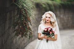 Sch?ne junge Luxusbraut im Hochzeitskleid, das im Park aufwirft lizenzfreies stockfoto