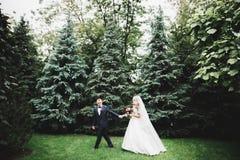 Sch?ne romantische Hochzeitspaare von den Jungverm?hlten, die im Park umarmen stockbild