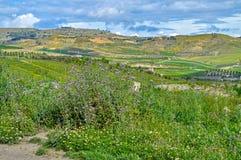 Sch?ne sizilianische Landschaft, Mazzarino, Caltanissetta, Italien, Europa stockfoto