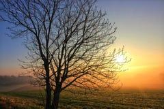 Sch?ne Sonnenuntergangnatur stockbilder