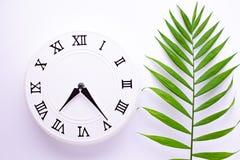 Sch?ne wei?e Uhr mit Bl?ttern der tropischen Palme Das Konzept der Zeit Feiertagsdekorationsbilder lizenzfreies stockfoto