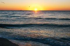 Sch?ner Sonnenaufgang und Seem?wen, die in roten Himmel ?ber Meereswellen auf Tropeninsel fliegen r tranquil stockbilder