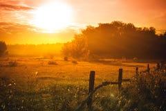 Sch?ner Sonnenuntergang auf der Wiese Abend für Stadt Abstrakter Natur-Hintergrund relax lizenzfreies stockbild