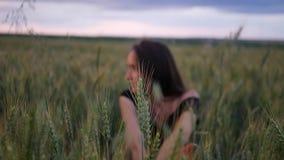 Sch?nes M?dchen im Kleid herein gehend durch das Feld, das Weizen?hren bei Sonnenuntergang ber?hrt stock video