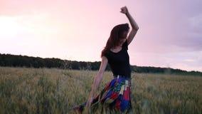 Sch?nes M?dchen im Kleid herein gehend durch das Feld, das Weizen?hren bei Sonnenuntergang ber?hrt stock footage