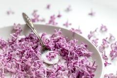 Sch?nes neues purpurrotes lila blossomsHomemade Vorbereiten des lila Zuckers mit ?berraschendem Duft stockfoto