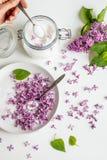 Sch?nes neues purpurrotes lila blossomsHomemade Vorbereiten des lila Zuckers mit ?berraschendem Duft stockbilder